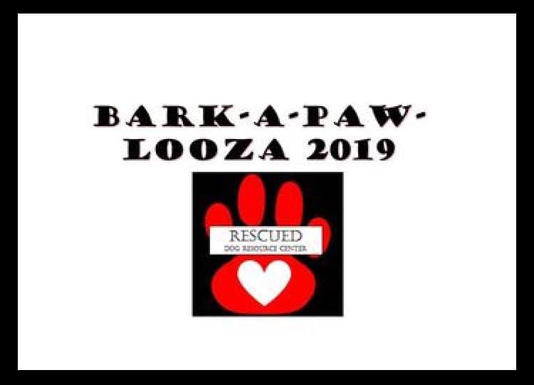 bark a paw looza 2019