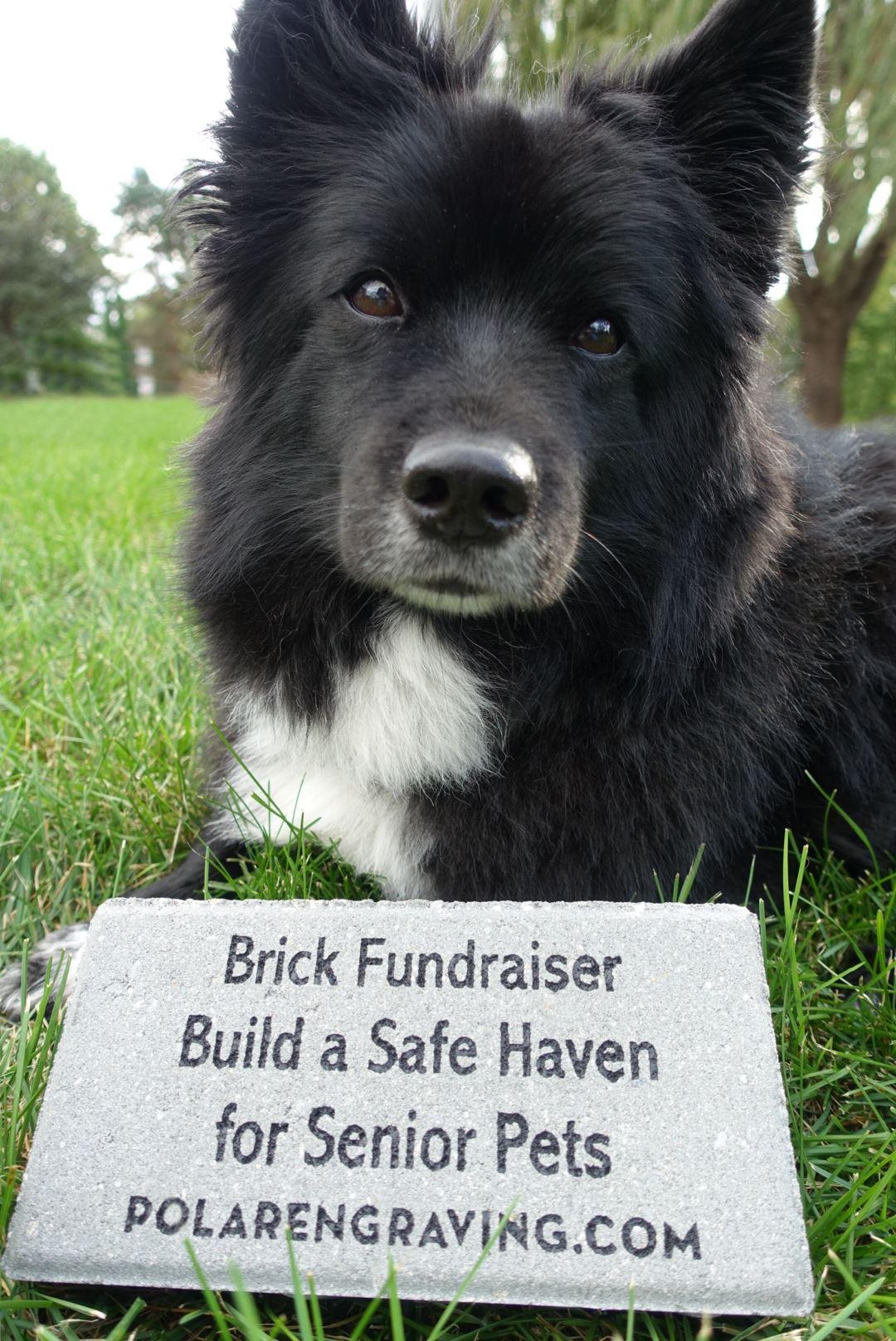 Brick Fundraiser