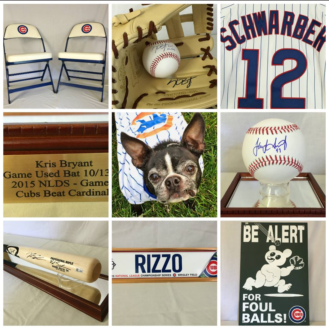 Cubs Items