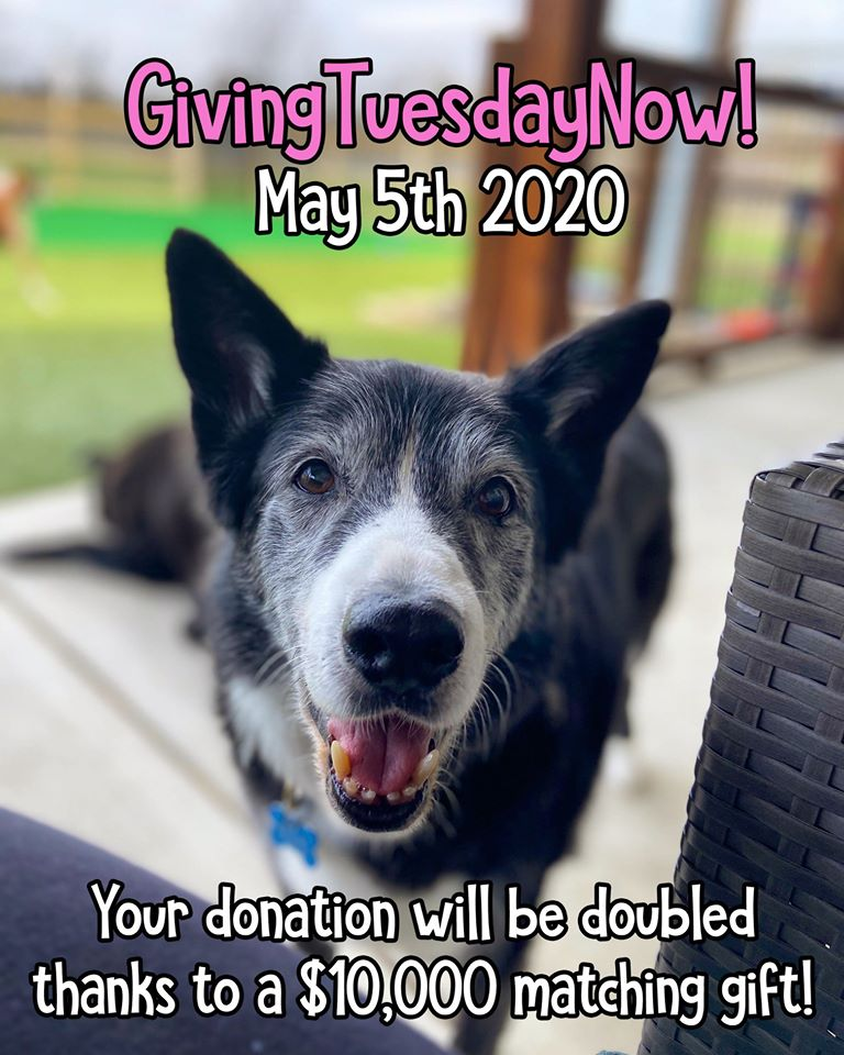 Giving Tuesday on May 5