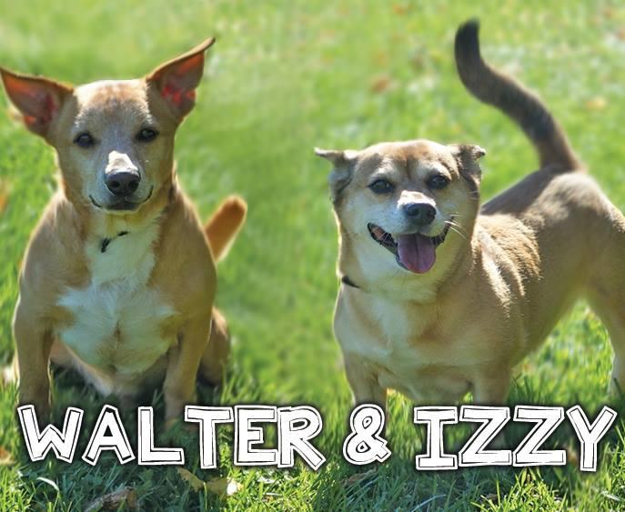 Walter & Izzy