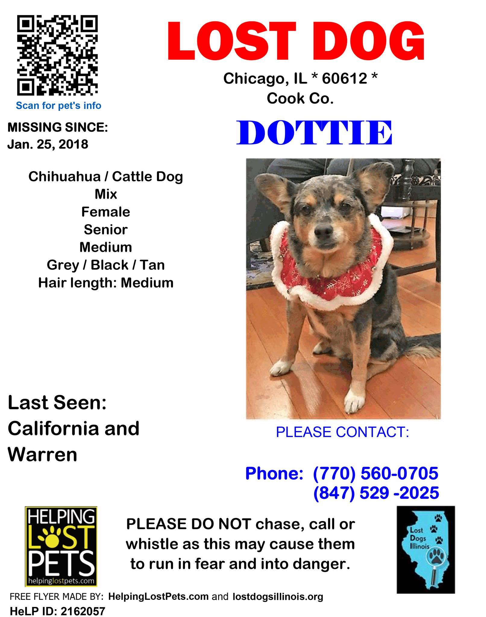 Dottie Missing