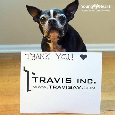 Travis Inc.