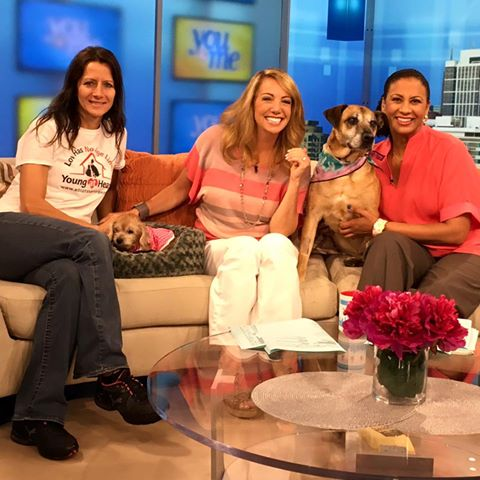 Pebbles and Little Bit on WCIU
