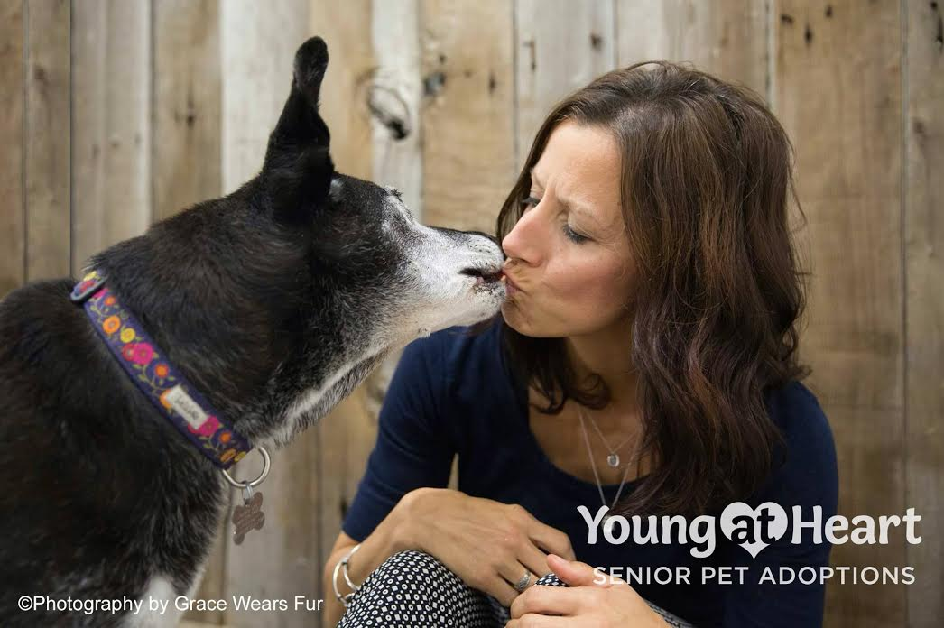 Young at Heart Senior Pet Rescue