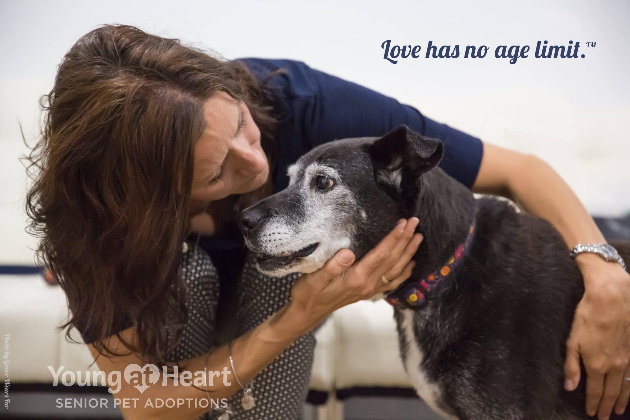 Senior Pet Rescue