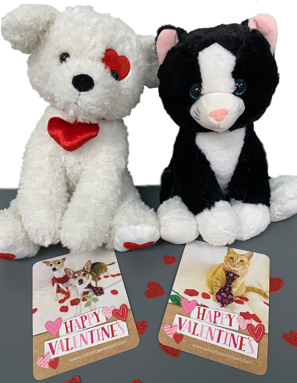valentine dog and cat
